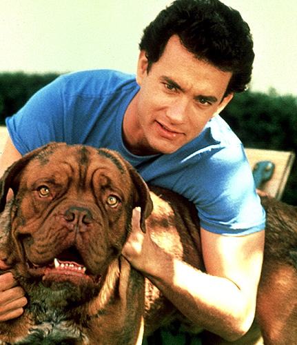 Pics Photos - Turner And Hooch