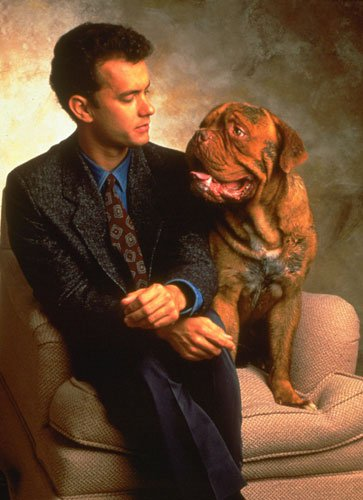 What Breed Of Dog Is Hooch From Turner And Hooch